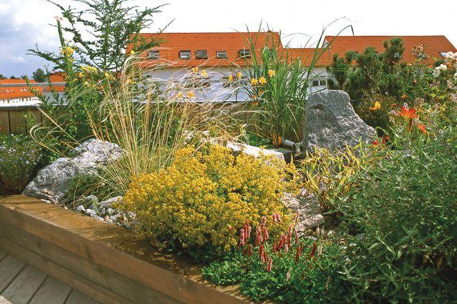Bei einer intensiven Begrünung lassen sich auf dem Dach gute Wachstumsbedingungen wie in einem echten Garten schaffen.
