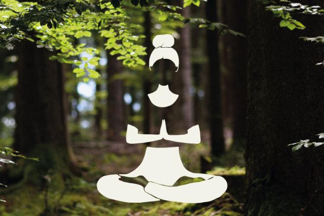 Meditieren im Wald: Mit einer neuen Klangmeditation kann man sich die Wald-Entspannung direkt auf das Handy holen.