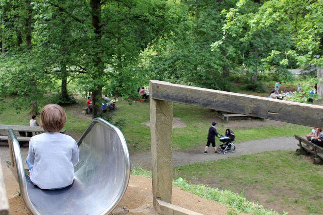 Sofern es die Corona-Regeln erlauben, kann man im Wald mehr Abenteuer erleben als in jedem Indoor-Funpark.