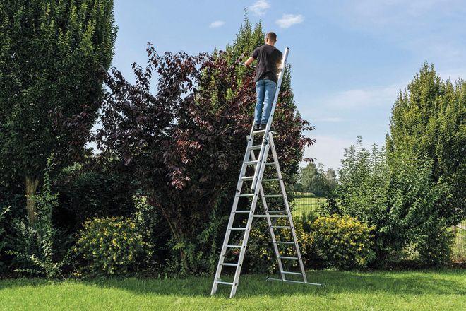 Besonders vielfältig einsetzbar rund um Haus und im Garten sind Mehrzweckleitern. Um auch auf gewachsenem Boden einen sicheren Stand zu gewährleisten, können sie mit Erdspitzen oder einer speziellen Krallen-Fußplatte ausgestattet werden.